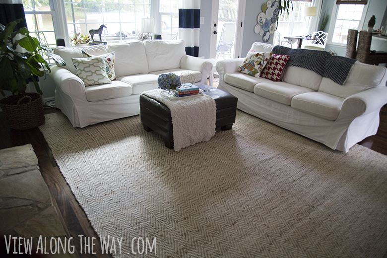 Attractive Jute Chenille Rug In A Living Room    Review
